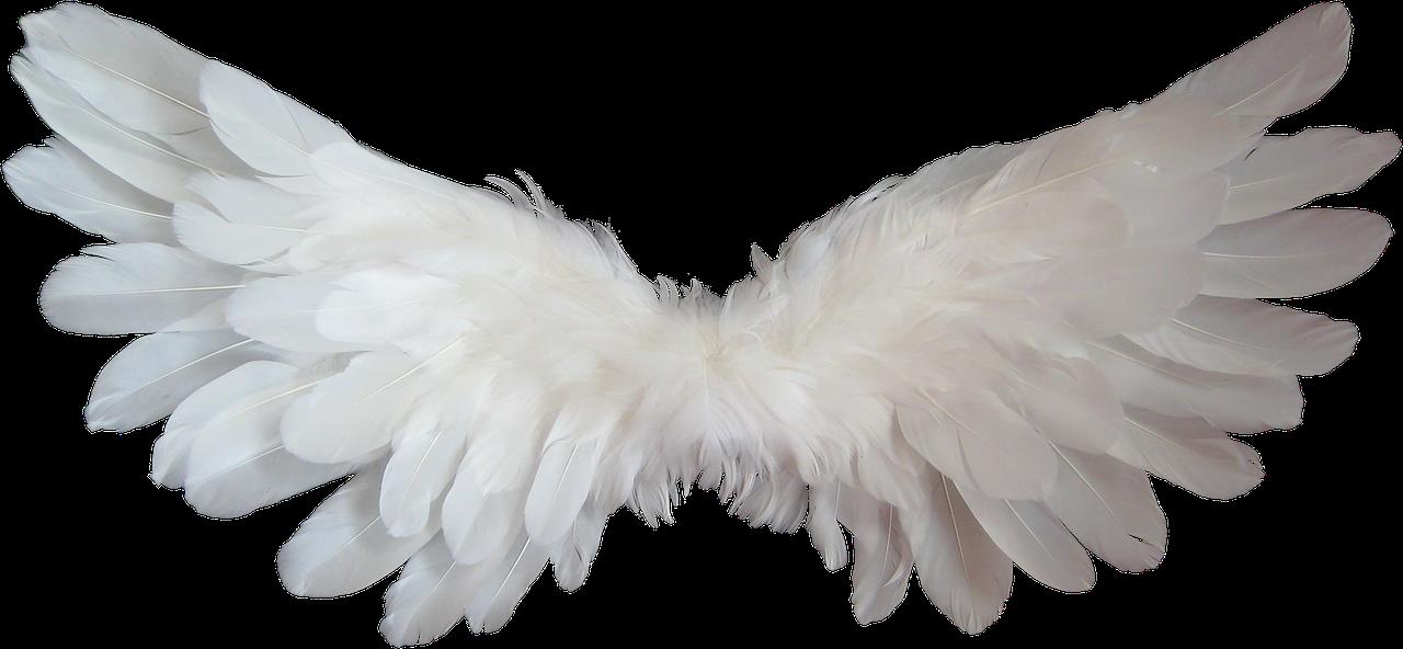 milczace anioly - zespol retta